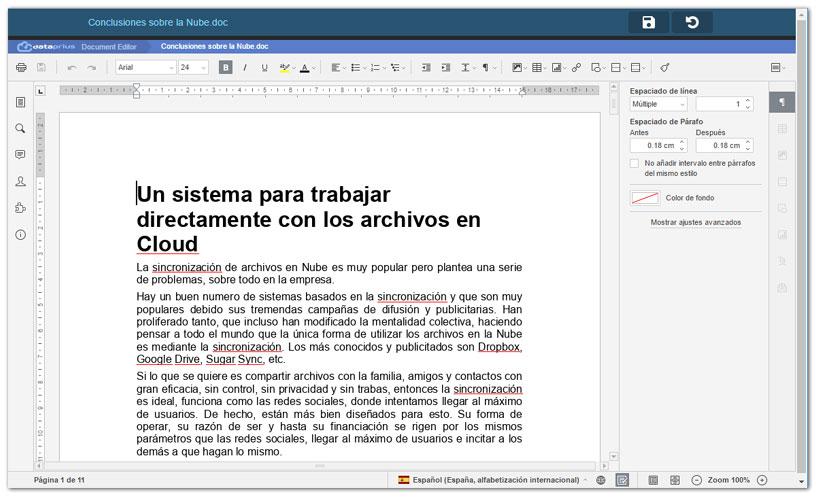 Editando archivo de Word en la aplicación web.